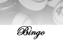 Online Casino Gaming with Bingo